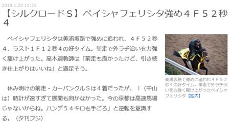 Screenshot_2019-01-26 【シルクロードS】ペイシャフェリシタ強め4F52秒4.png